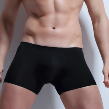 Brand Sexy Mens Underwear Gay Underwear Solid Color Gauze Panties Low Rise Mens Underwear Penis Hipster M-XXXL(China)