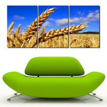 3 Piece Wall Art Canvas Modern Paintings Wheat Barley Harvest Scenery Blue Sky Landscape Decorative Pictures For Room No Frame