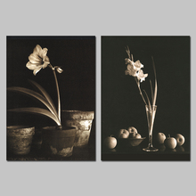 Fashion Cool 2Pcs/set Black And White Flowers Narcissus Decoration Wall Art Picture Canvas Paintings For Living Room Unframed