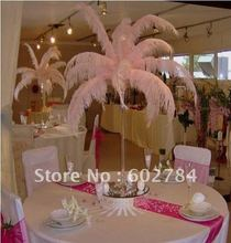 EMS Free Shipping 50pcs/lot 26-28 inches 65-70cm pink ostrich drab feather ostrich plume(China)
