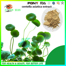 GMP standard Catuaba Extract,Best price Centella Asiatica Extract powder 400g