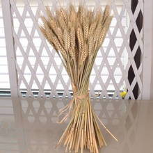 50pcs artificial flower ear of wheat dried decor wedding decorations offer silk flower vase plants Camera wheat christmas t3