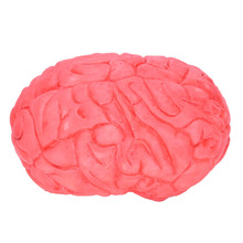 Prop Rubber Horror Fake Scary Brain Haunted House Organ Body Part Halloween Decoration Horror Prop Decor Gag Toys(China)