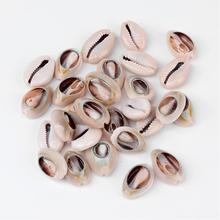 50pcs Spiral Shell Beads for DIY Jewelry Making Dyed Cowrie Shells, Seashell, Size: about 18~20mm long,13~14mm wide,6~8mm thick