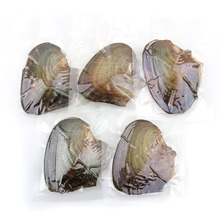 With 6-8mm Pearl Freshwater Vacuum-pack Oyster Wish Pearls, Pearl Mussel Shell with Pearl Inside, Colors Pearl Mysterious Gifts