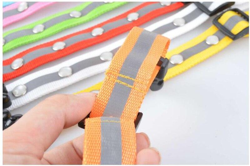 Led dog collar (15)