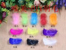 Free shipping ! 1000Pcs/Pack Craft Goose Feather Tail Wing Feather Mixed Colors 5-8CM/2-3in for hat/party mask(China)