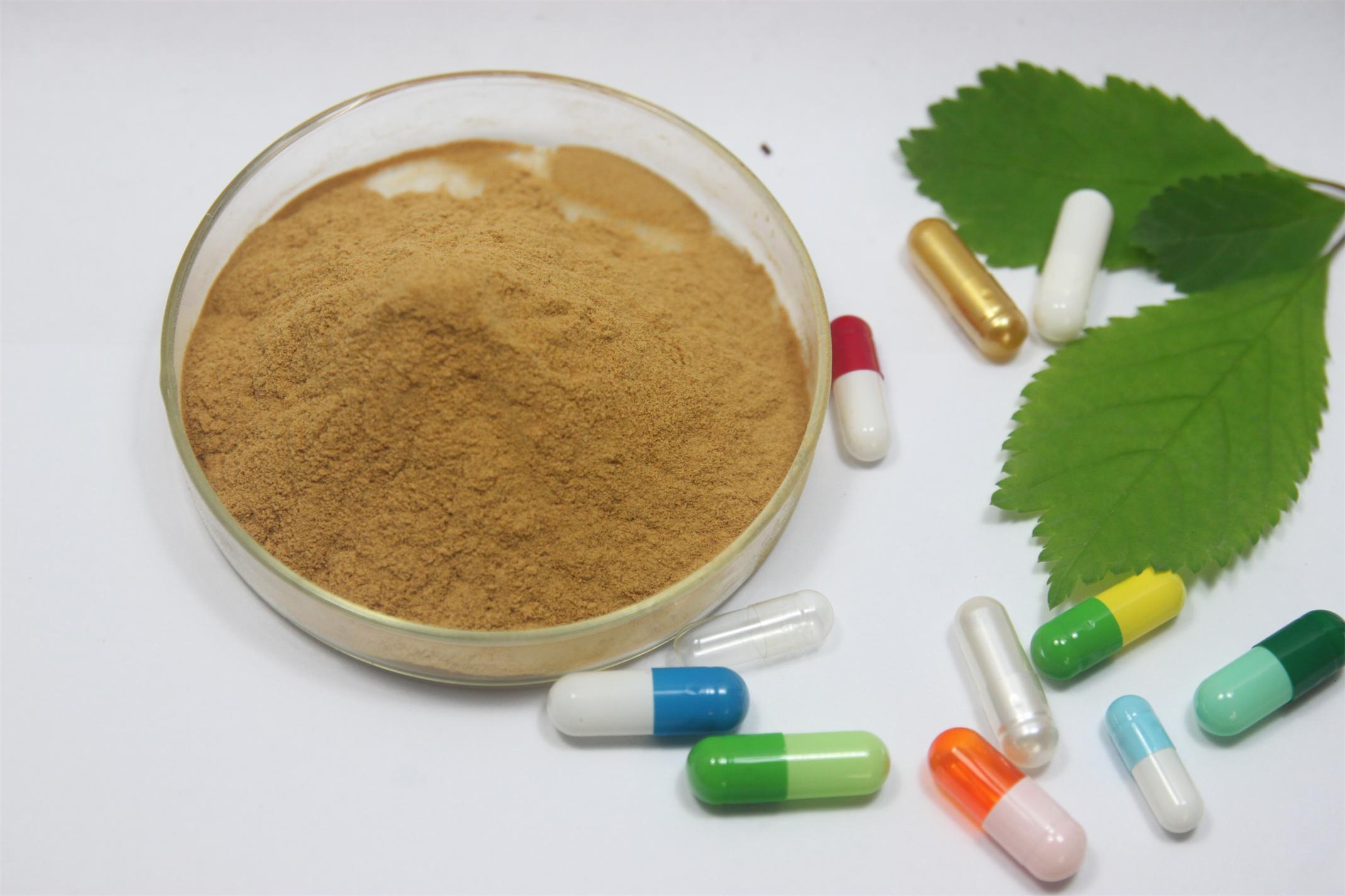 GMP, экстракт зеленого чая порошок с egcg для Вес веса таблетки для метаболизма boost и здоровья сердца 1000 грамм(China (Mainland))
