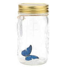 Romantic Glass LED Lamp Butterfly Jar Valentine Children Gift Decoration Blue(China)