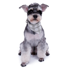 Lovely New Adjustable Pet Dog Puppies Hot Collars Pink Gray Plaid Black Dot Cute Scarf For Cat Girls Neckerchief Puppy Necklace