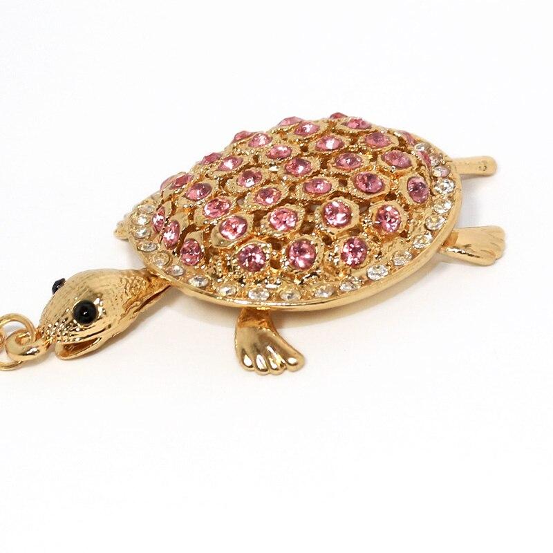 JN-tortoise-1