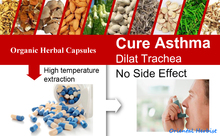 Natural Plant Extract Caps-ules for Increasing Lung and Bronchus Health, Cure Asthma and Lower Its Attack Rate(China)