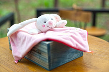 HOT 1Pcs 25cm*25cm Appease Towel + 1Pcs rabbit /set Baby Calm Blanket Square Soft Toys Learning Education Baby Care Product Doll(China)