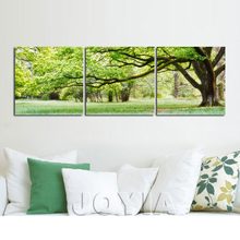 3 Piece Tree Pictures Green Park Landscape Painting Canvas Prints For Living Room Chamber Wall Decor Trees Art Paint No Frame