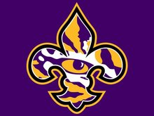 LSU Tigers flag 3ftx5ft Banner 100D Polyester Flag metal Grommets 51433(China)