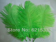 Wholesale!LIME GREEN Ostrich FEATHERS 6-8''/15-20cm Bridal/Wedding/Centerpiece freeshipping(China)
