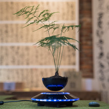 Simple decoration creative pot fleshy DIY plant living room air magnetic gifts bonsai floating(China)