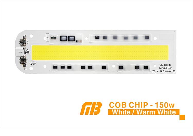 COB CHIP_06