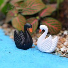 10pcs Black and white feather Swan Bottle decoration supplies moss micro landscape deco Garden deco Creative handicrafts(China)