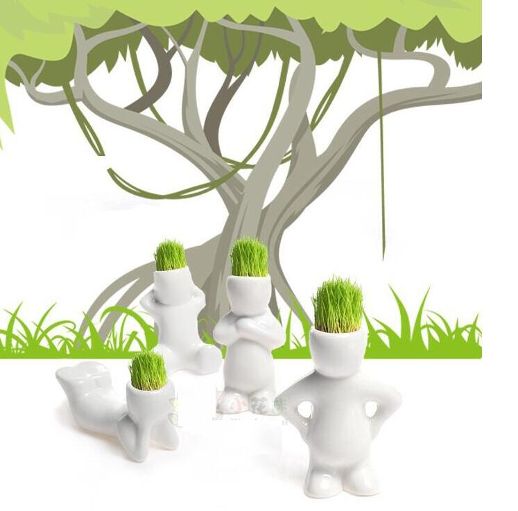 4/pc FREE SHIPPING Promotion Hot price Gift Hair Man grass Plant Bonsai(China (Mainland))