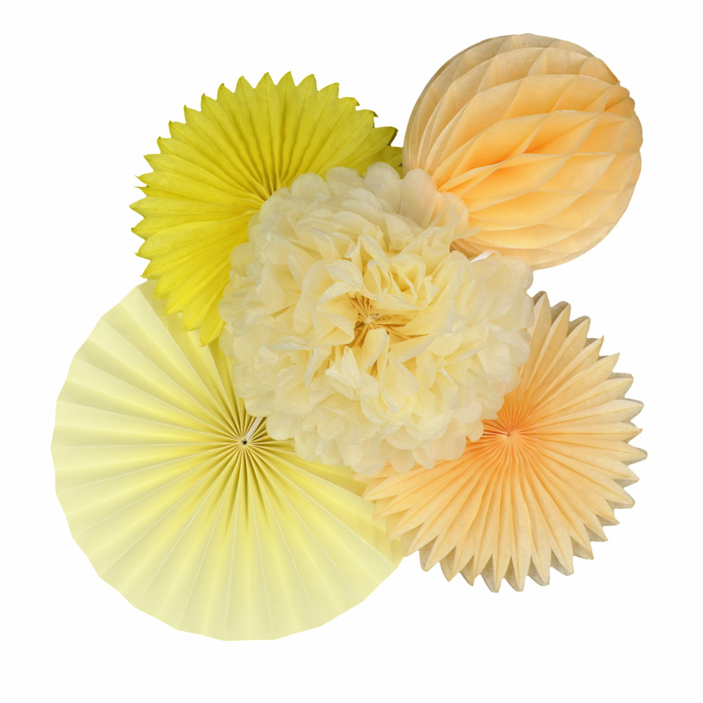Paper Fan Flowers Sets 5pcs Tissue Paper Fans Flowers Pom Poms Balls Lanterns Party Decor Craft For Wedding Decoration Fan(China (Mainland))