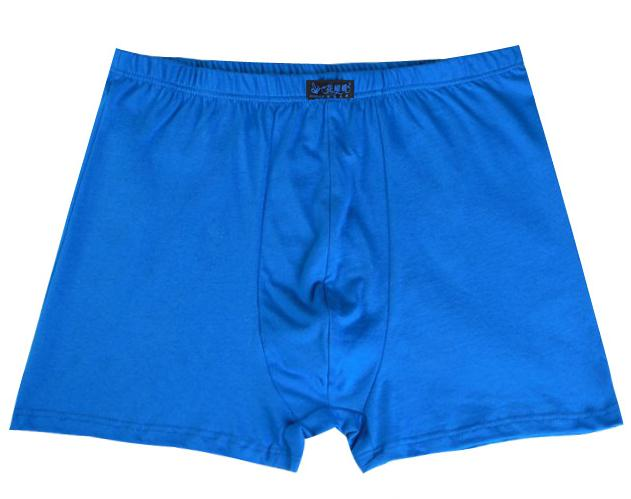 Male Men\`s Long Boxer Shorts Cotton Panties Mens Large Size Underpant Fat New Fashion Sexy (2)