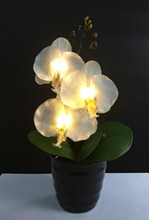 Free Shipping 3Led Blossom Orchid Flower Light with 2*AA Battery pot ,Height  of 25cm 3 Blossom Orchid Flowers with buds
