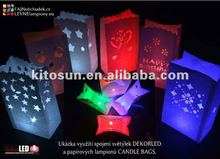 NEW!!!100pcs/pack super bright HIGH QUALITY  REUSABLE  FLORALYTE DECORATIVE ACCENTS/paper lantern led Light