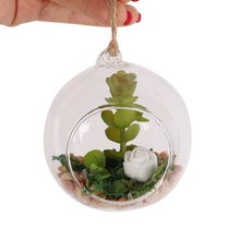 DIY Transparent Clear Wall Hanging Glass Vase Terrarium Plants Flower Hydroponic Micro Landscape Bottle Candlestick Home Decor(China)