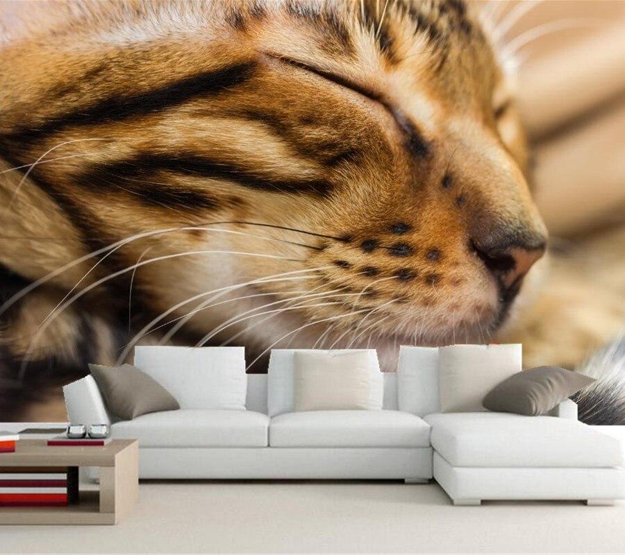 Custom wallpaper for walls 3d,Cats Snout Sleep Whiskers Animals wallpaper,living room sofa TV wall bedroom papel de parede<br>