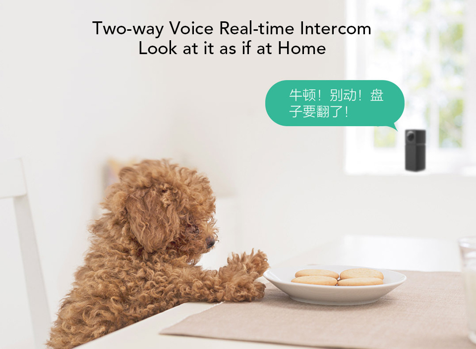 Xiaomi Xiaofang Camera Dual Lens Version Panoramic Smart Network IP Camera Four Screens in One Window Two-way Audio Support VR (8)