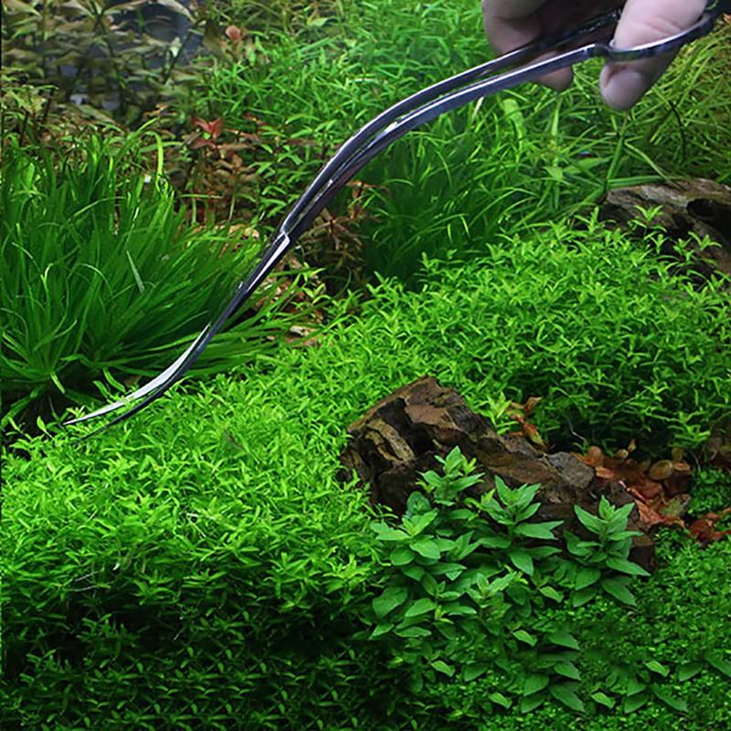 Professional Aquarium Fish Tank Aquatic Plant Cleaning Tools Tongs Scissor Long Stainless Steel Wave scissor curved Pet Supplies (5)