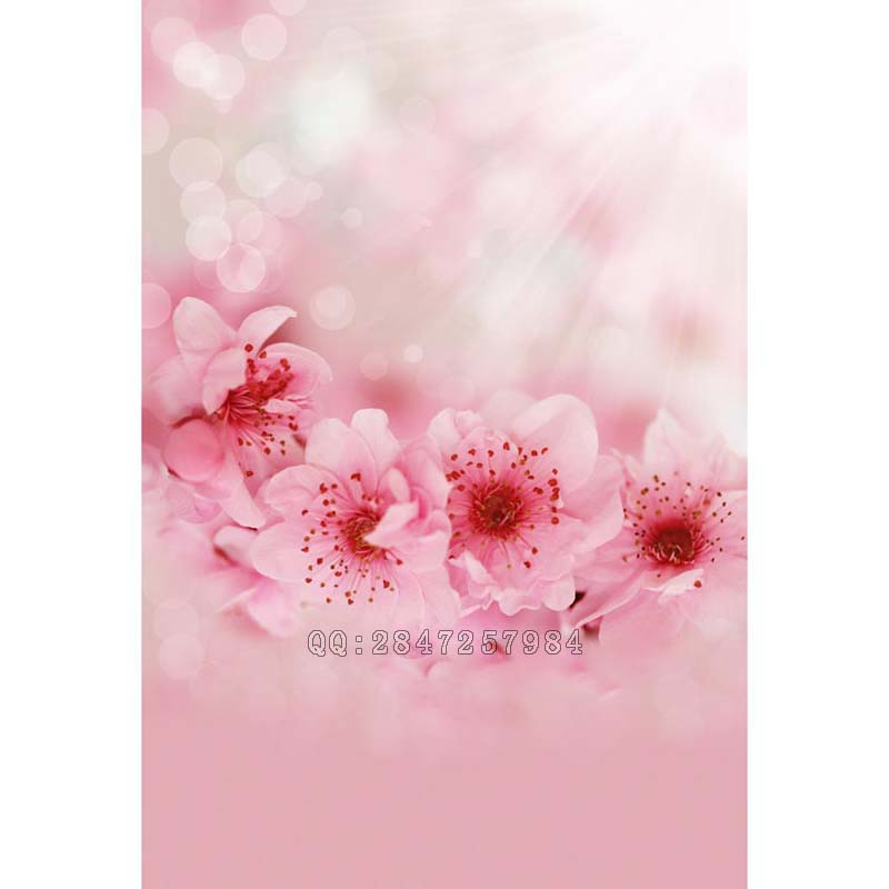 Photography background Sunshine blooming plum flower princess  photo space  backdrops S-1356<br><br>Aliexpress