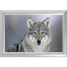 Silver Color Aluminum Alloy Picture Frame Home Decor Custom Canvas Frame Animals Wolf Canvas Poster Frame F170112#58(China)