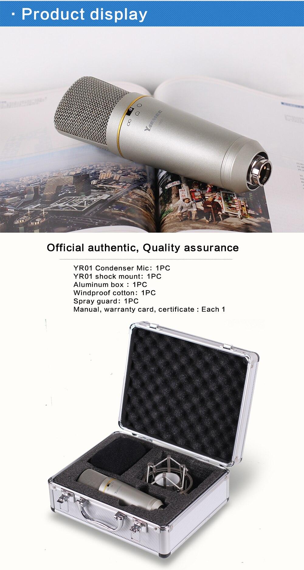 Professional Studio Microphone 12