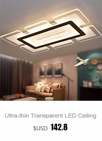 Living Room Ceiling Lamp (7)