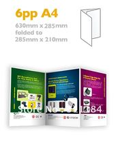 Custom A4 Brochures Folded Flyers 6PP Full Color Thick Paper Printing FREE SHIPPING(China)