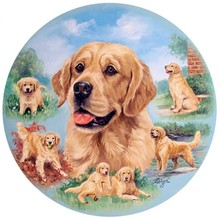 2017 Diamond embroidery 5D Cross Stitch Rottweiler Dog picture Home Decoration 5D Needlework diamond Mosaic BK-2474(China)