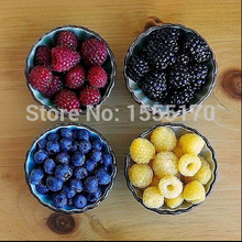 4 color 4000 PCS raspberry seeds ( blue,  black, red, yellow) succulents delicious fruit plants bonsai tree for garden