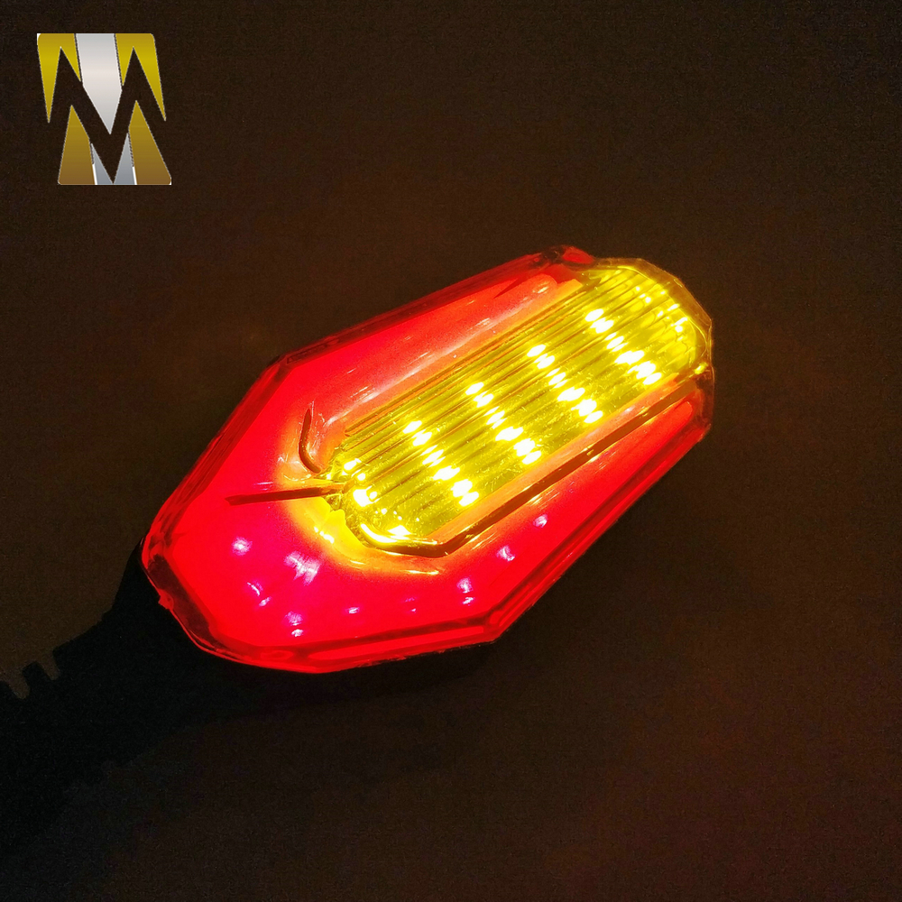 Universal Turning Signal Light (22)