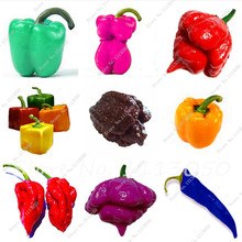 Free Shipping 200Pcs Organic Rainbow Bell Pepper Seeds(Chili Seeds),Mixd Colour ,Vegetable Seeds Non-GMO Plant for Home Garden