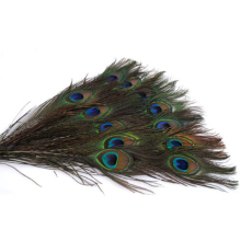 100pcs 25-30cm Beautiful Natural Peacock Tail Feathers Eyes Feathers Decorations Appeal Sewing Wedding Party Home Hairs