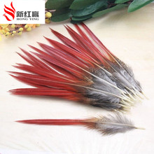 200pcs/lot 10-14cm pheasant feathers red sword rare natural bulk feather fly fishing tying Hat accessories material