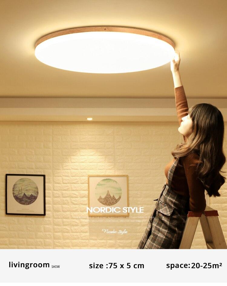 led ceiling light (5)