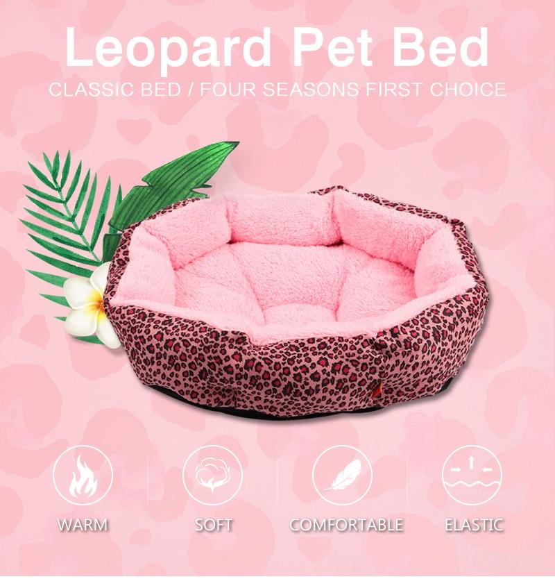1 cat bed