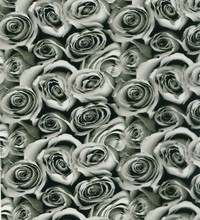 Free Shipping Car-Soul5Sqm rose flower pattern hydrographic films water transfer film width 50cm CS052-2