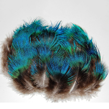 Free shipping 12 pcs/lot DIY peafowl Peacock green feathers feather /jewelry hair wedding dress accessories