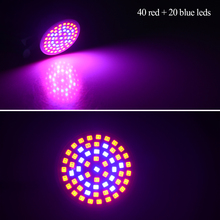 Full Spectrum LED Grow Light E27 220V 41 Red + 19 Blue LED Lamp Bulb for Indoor Plants Flowers Hydroponics Green House Lighting