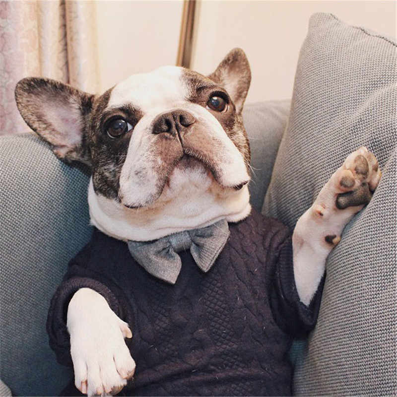 French Bulldog Pug Dog Sweater Winter Dog Clothes Winter Pug