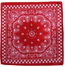 Free Shipping 2017 New Hip Hop Unisex Red Skull Paisley Checked Bandanas Headwear For Mens Womens